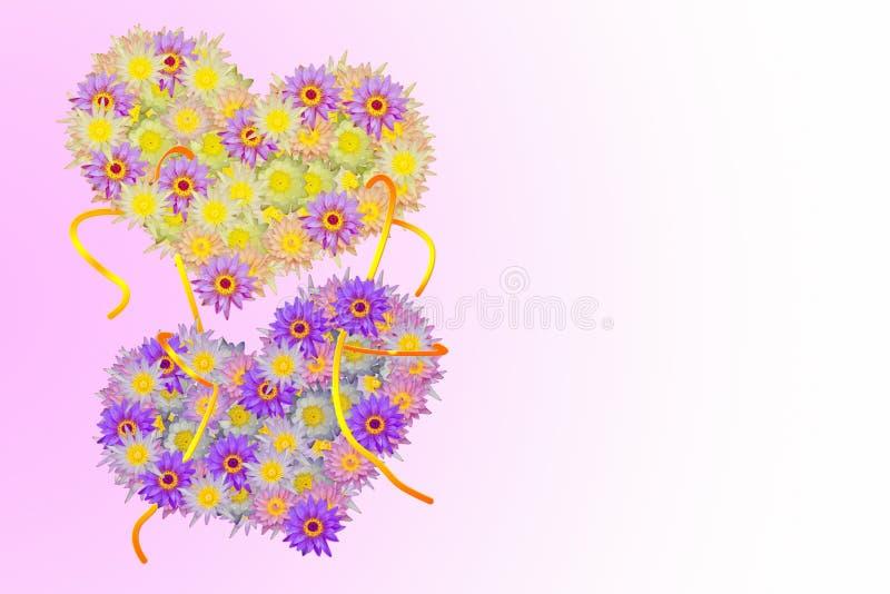 Il cuore giallo porpora rosa due ha modellato i fiori di loto su pallido - fondo rosa illustrazione vettoriale
