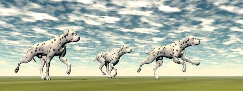 Download Il Dalmata Insegue Il Funzionamento - 3D Rendono Illustrazione di Stock - Illustrazione di nero, mammifero: 30825957