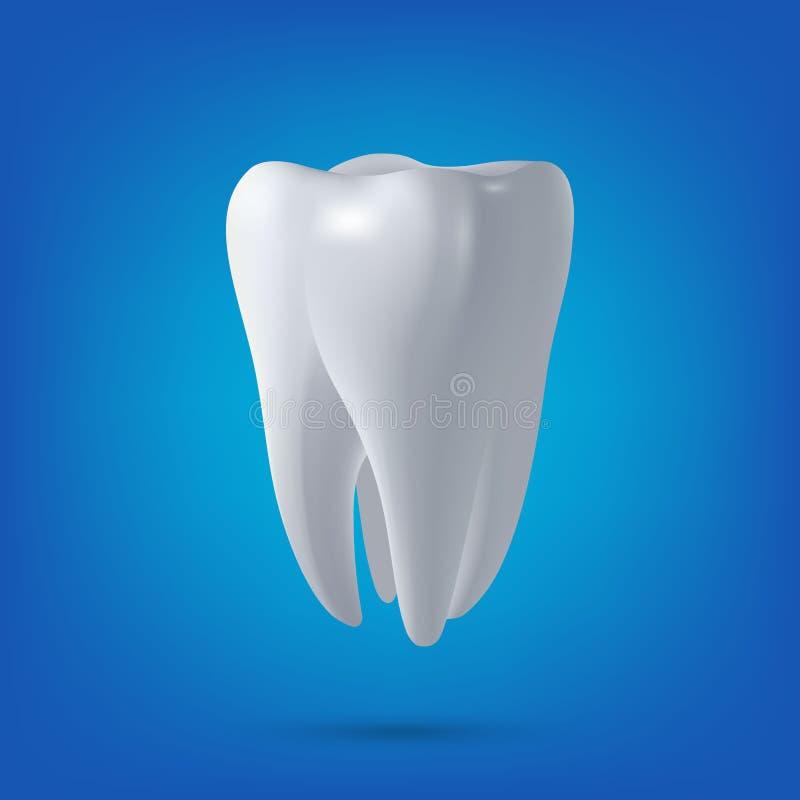 Il dente di vettore, 3D rende Dentario, medicina, elemento di progettazione di massima di salute illustrazione di stock