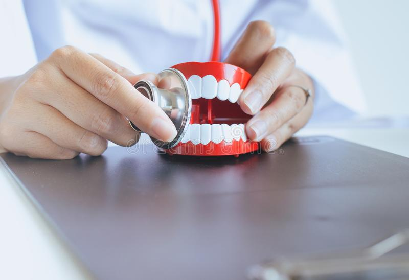 Il dentista diagnostica i modelli di plastica con lo stetoscopio, concetto dei denti di controllo dentario fotografia stock libera da diritti