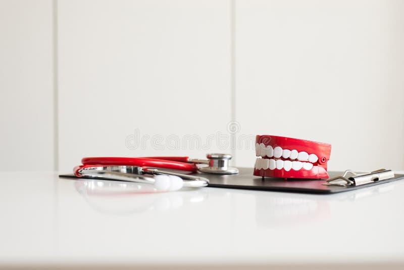 Il dentista diagnostica i modelli di plastica dei denti con lo stetoscopio fotografia stock
