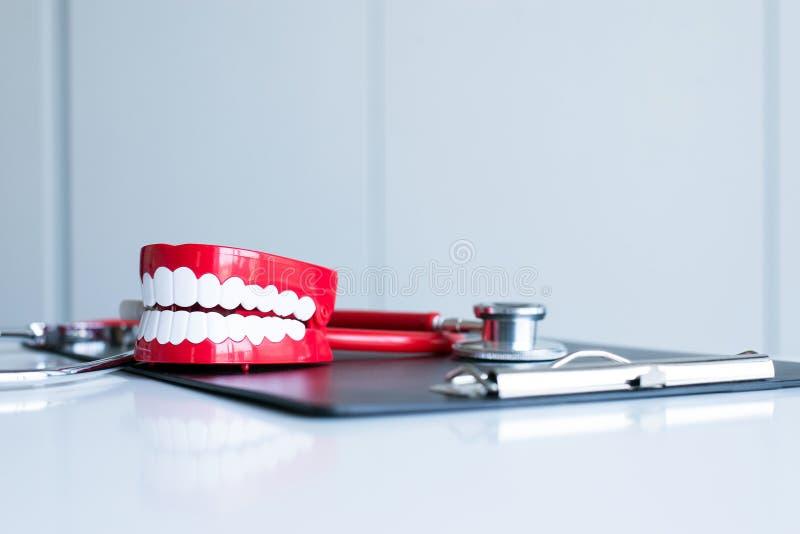 Il dentista diagnostica i modelli di plastica dei denti con lo stetoscopio fotografie stock