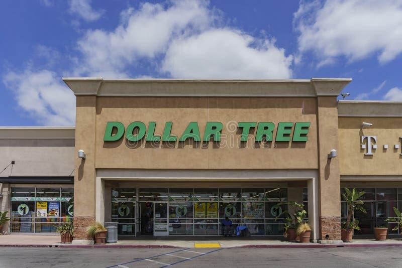 Il deposito del bilancio - albero del dollaro fotografia stock libera da diritti
