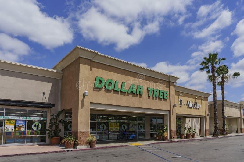Il deposito del bilancio - albero del dollaro immagine stock libera da diritti