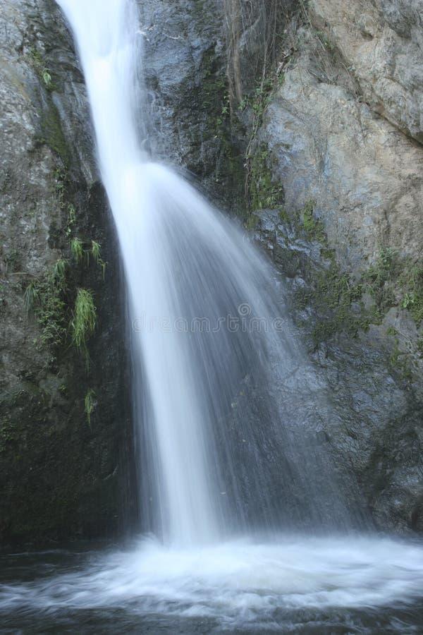 Il dettaglio affascinante dell'acqua scorre nel parco nazionale unico di EL Avila a Caracas, Venezuela fotografia stock