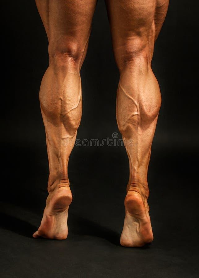 Il dettaglio sul culturista maschio partorisce muscoli sparati sul backgrou nero immagine stock