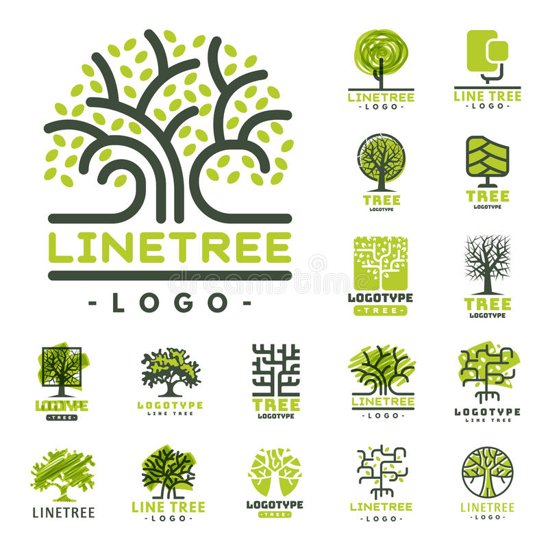 Il distintivo naturale conifero di viaggio dell'albero di verde della siluetta del distintivo all'aperto della foresta completa l illustrazione vettoriale