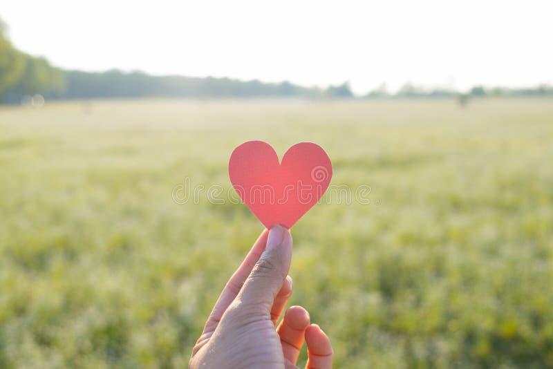 Il dito tiene il cuore rosso con il fondo del campo di erba fotografia stock