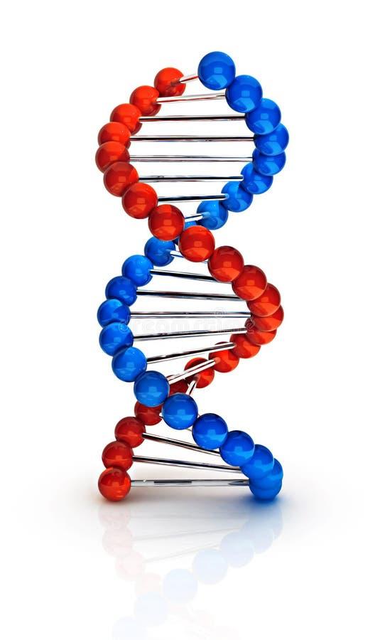 Il DNA 3d rende royalty illustrazione gratis