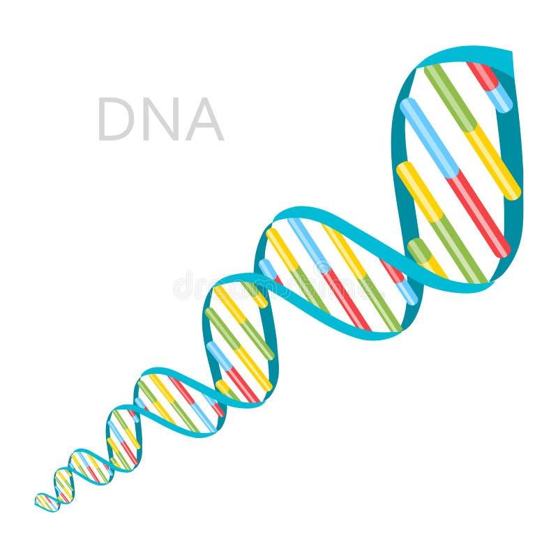 Il DNA incaglia l'icona illustrazione di stock