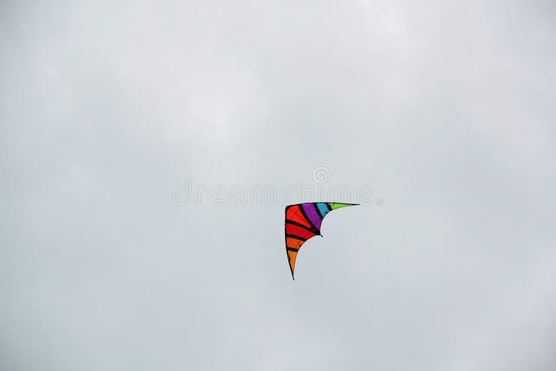 Il drago di volo fotografia stock