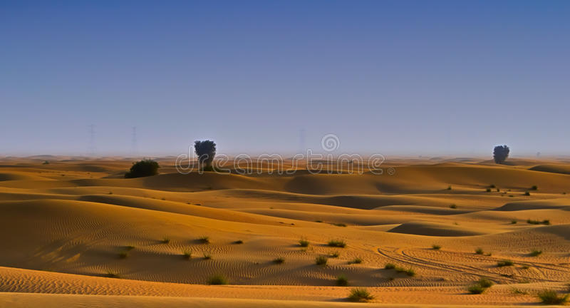 Il Dubai Al Qudra Desert fotografia stock