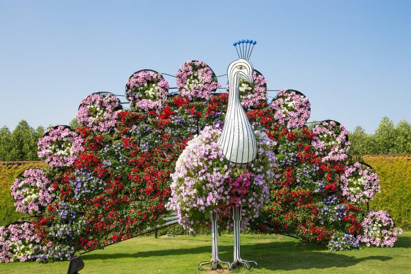 IL DUBAI, UAE - 20 GENNAIO: Giardino di miracolo nel Dubai, il 20 gennaio, fotografie stock