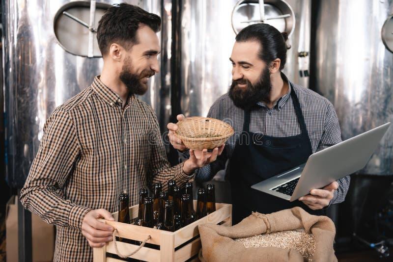 Il fabbricante di birra barbuto sta fiutando il luppolo nel canestro della birra alla fabbrica di birra Controllo della qualità d fotografie stock