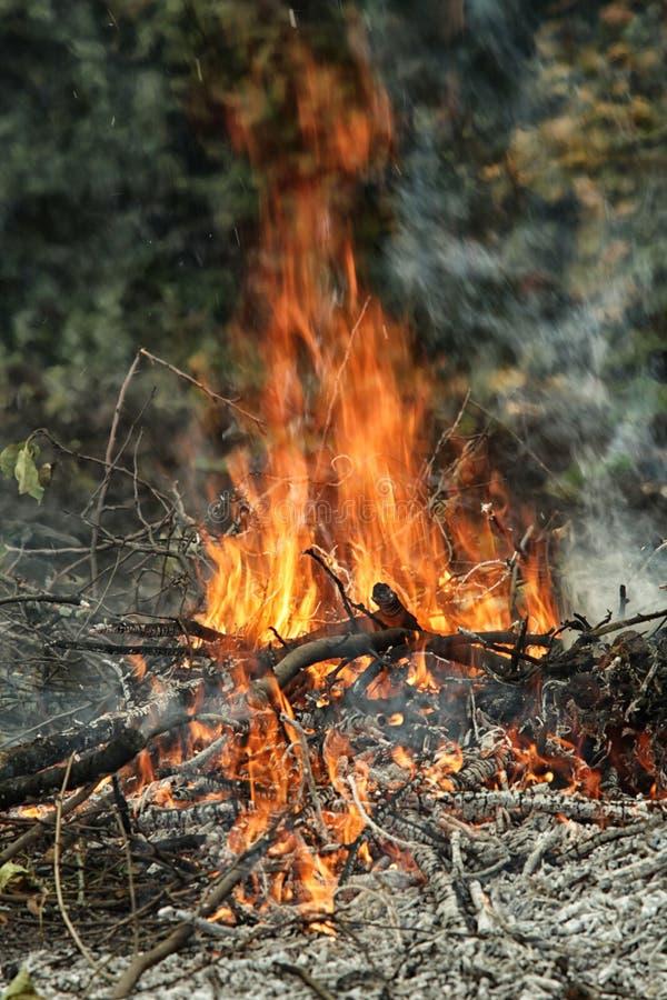 Il falò di morte con la fiamma e le ceneri ascendenti immagine stock libera da diritti