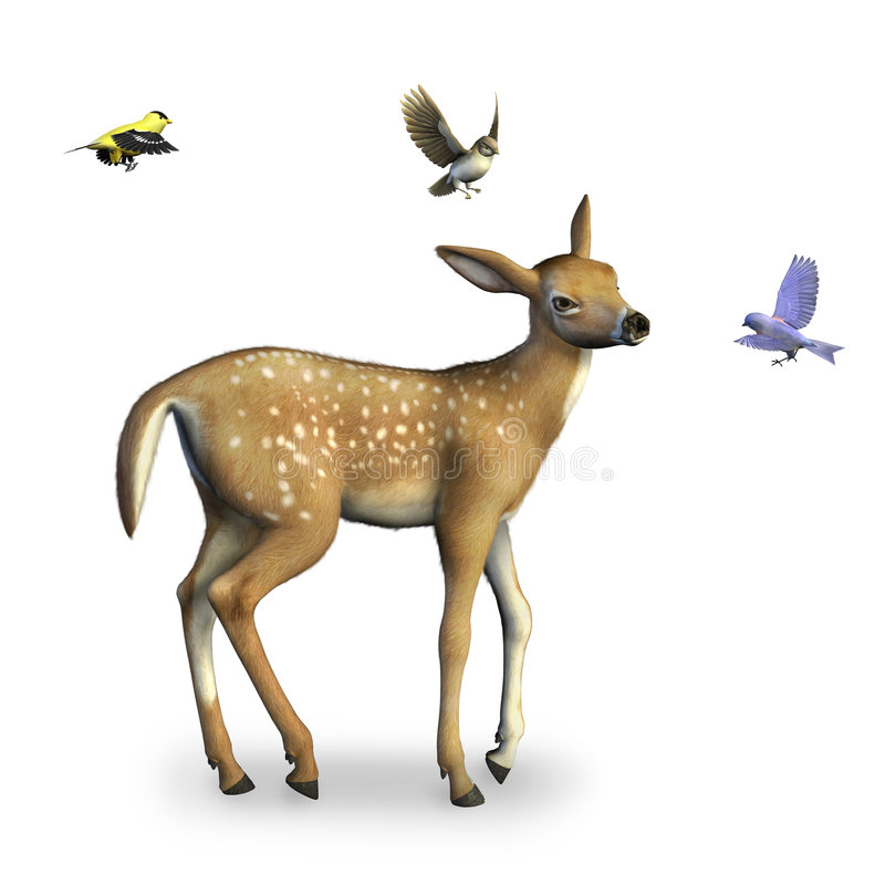 Il Fawn con gli uccelli include il percorso di residuo della potatura meccanica illustrazione vettoriale