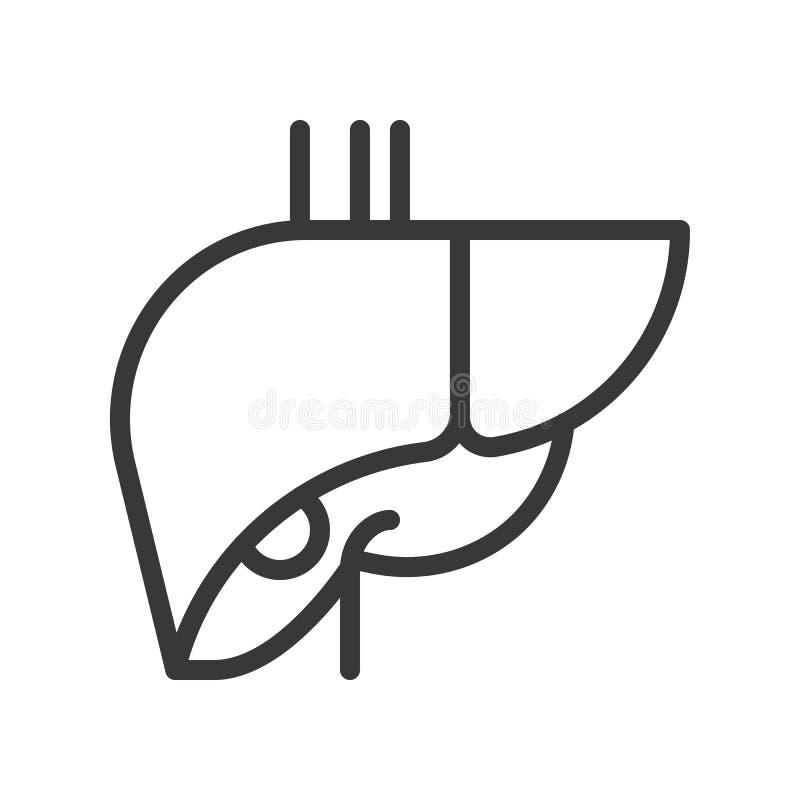 Il fegato, organo umano ha collegato l'icona di vettore del profilo illustrazione di stock