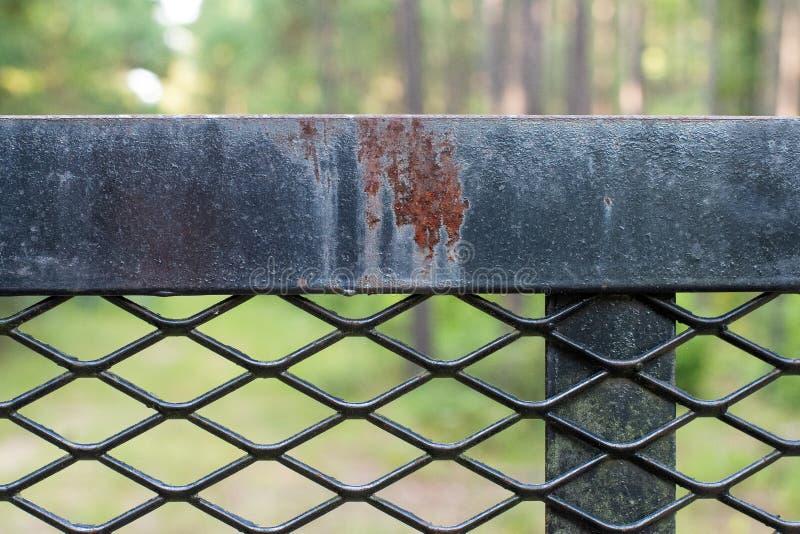 Il ferro nero terrificante recinta la foresta fotografia stock libera da diritti