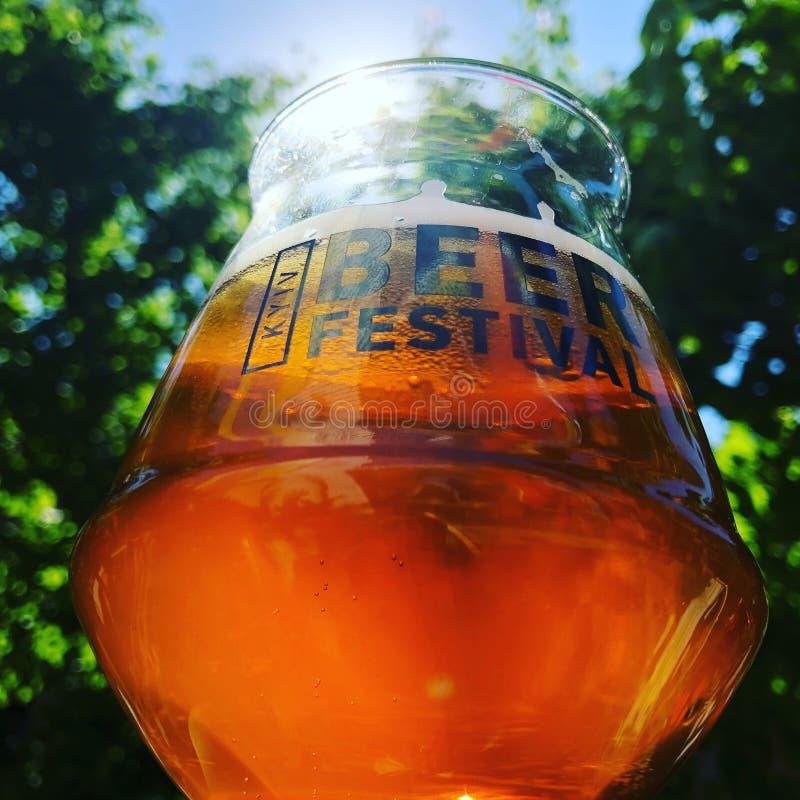Il festival del mestiere della birra beve il vetro immagini stock libere da diritti