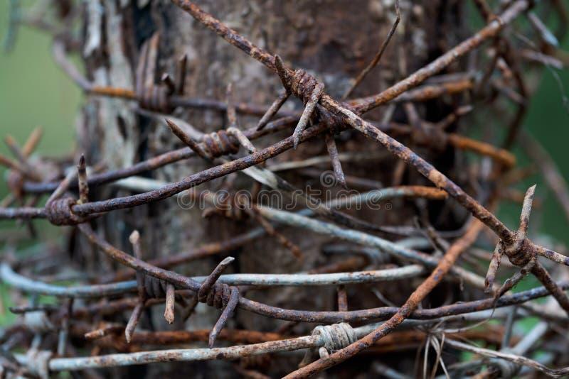 Il filo spinato arrugginito ha annaspato su sulla posta fotografie stock libere da diritti