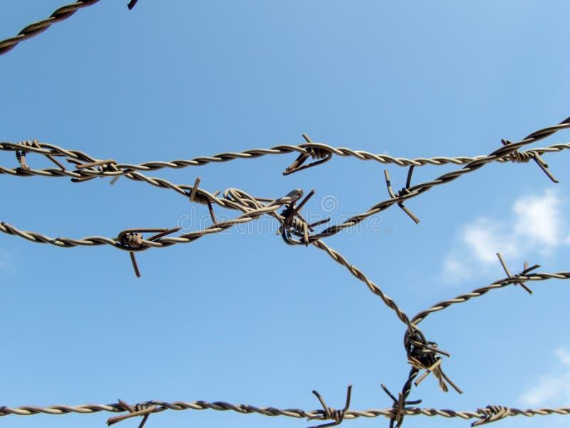 Il filo spinato su cielo blu ha perso il concetto del campo profughi di imprigionamento di libertà fotografia stock libera da diritti