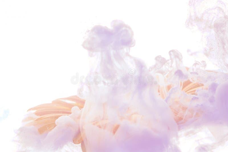 Il fiore blu luminoso con la viola spruzza isolato su fondo bianco immagini stock libere da diritti