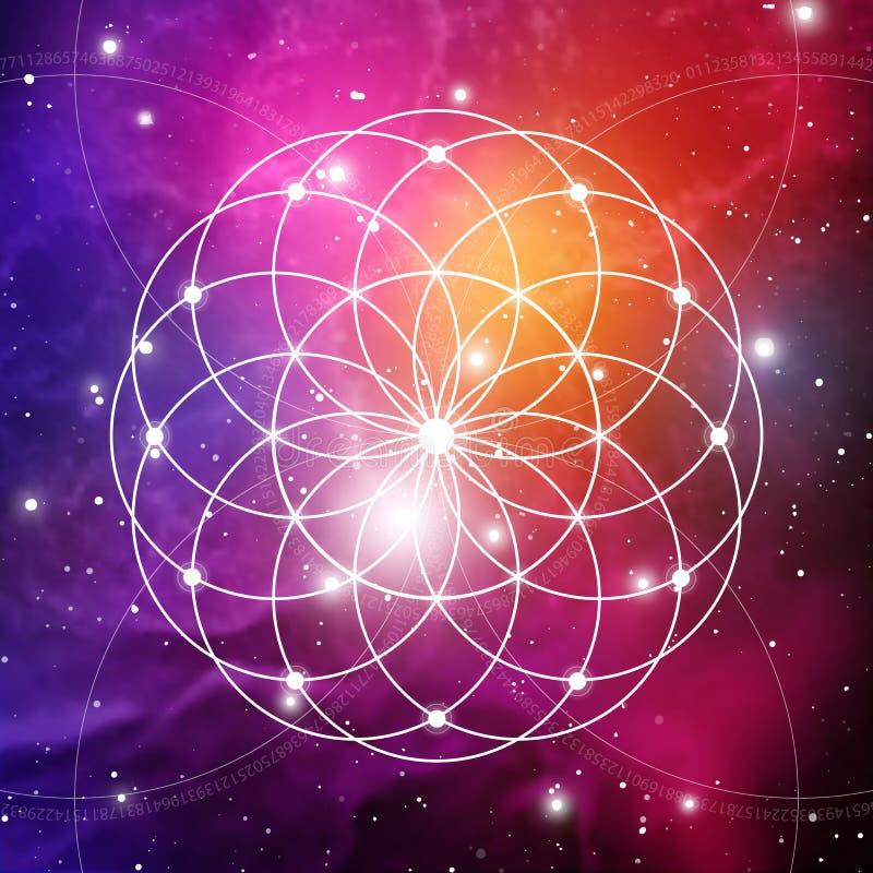 Il fiore di vita il collegamento circonda il simbolo antico sul fondo dello spazio cosmico La geometria sacra La formula della na fotografia stock libera da diritti