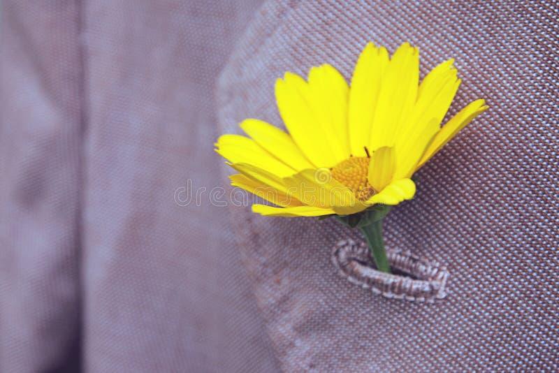 Il fiore giallo attaccato nell'occhiello antiquato del risvolto del cappotto, si chiude su fotografia stock