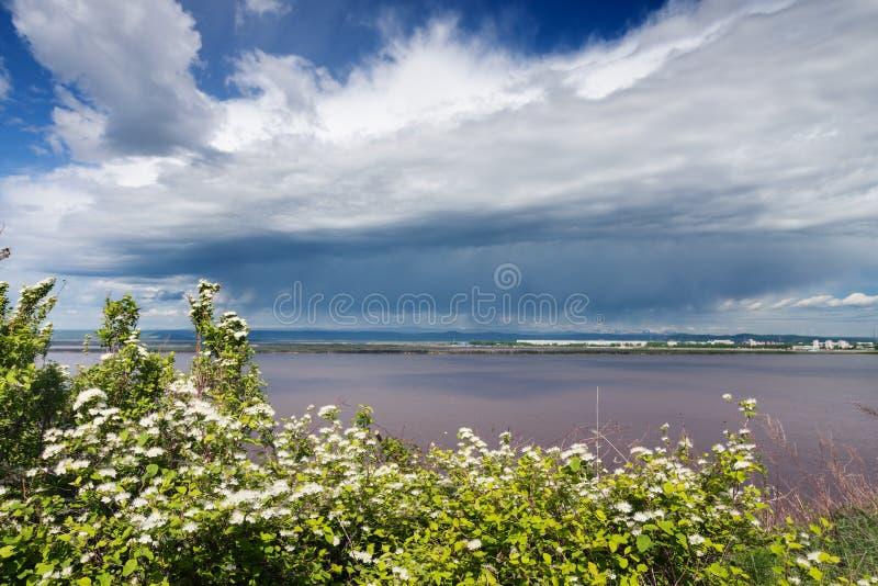 Il fiume Amur fotografie stock libere da diritti