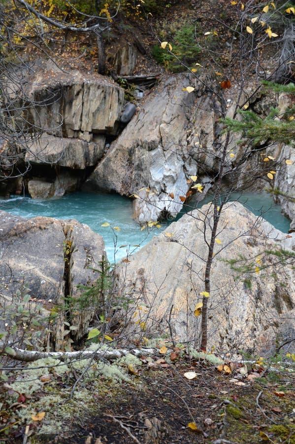 Il fiume cade fuori di dorato, Canada immagini stock libere da diritti