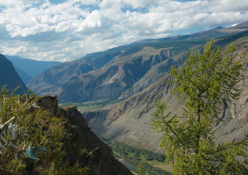 Il fiume Chulyshman della valle fotografia stock libera da diritti