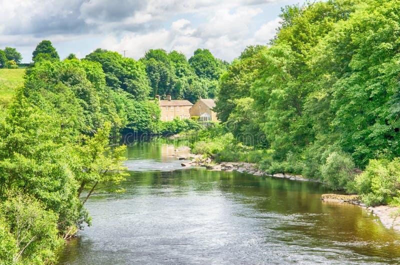 Il fiume colloca sul tee la contea Durham in Inghilterra fotografia stock libera da diritti