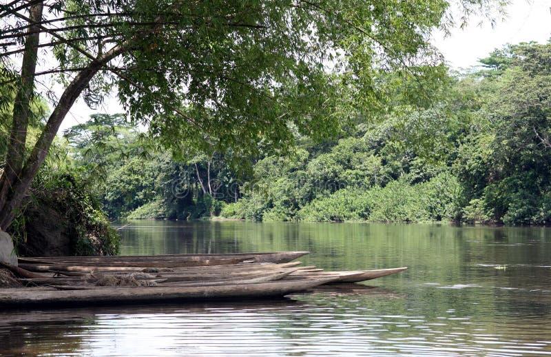 Il fiume Congo immagini stock libere da diritti
