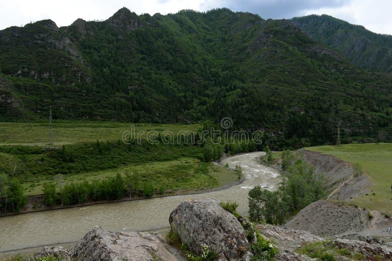 Il fiume di Chuya nell'area del kalbak-Tash del tratto, Gorny Altai, Siberia, Russia fotografie stock