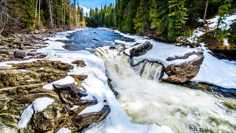 Il fiume di Murtle ruzzola sopra il bordo delle cadute dentro parzialmente congelate di Mushbowl BC, il Canada fotografia stock libera da diritti