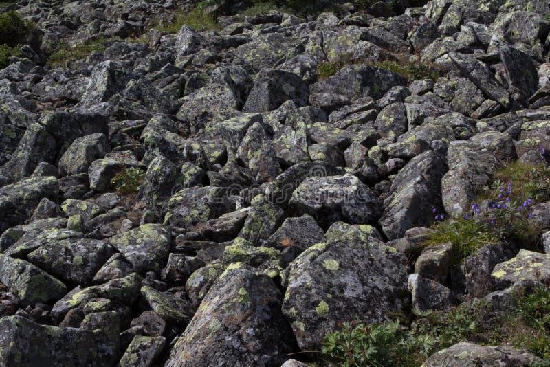 Il fiume di pietra kurumnik un giacimento detritico di for Pietre di fiume