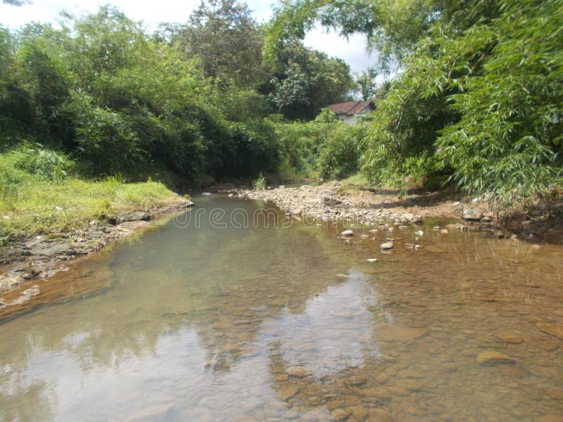 Il fiume e gli alberi di bambù sul villaggio immagine stock libera da diritti