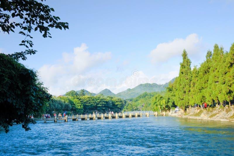 Il fiume e gli alberi verdi immagini stock