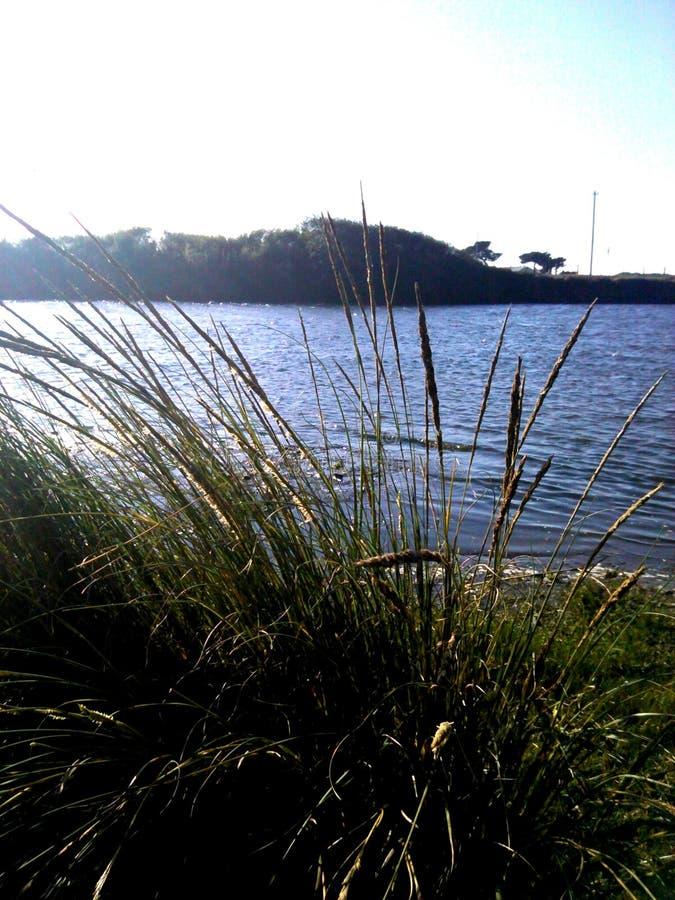 Il fiume Mad in Mckinleyville, Ca fotografia stock libera da diritti