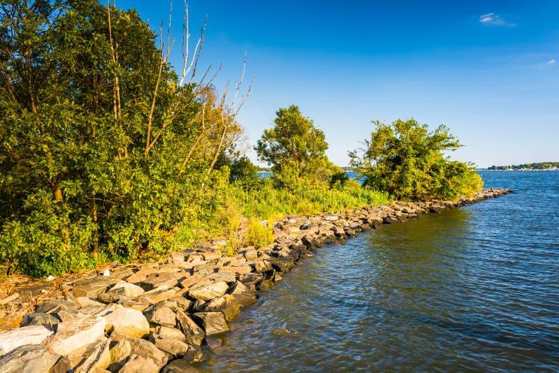 Il fiume posteriore al parco del punto di Cox in Essex, Maryland fotografia stock