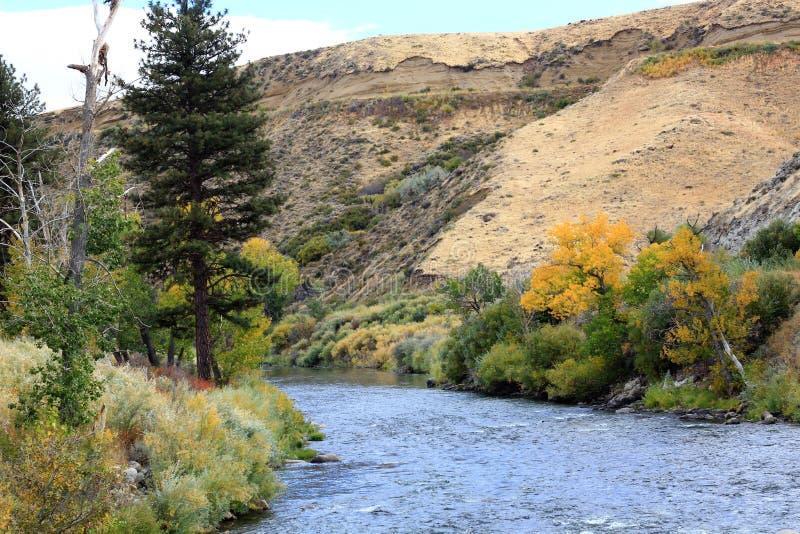 Il fiume Truckee fotografia stock libera da diritti