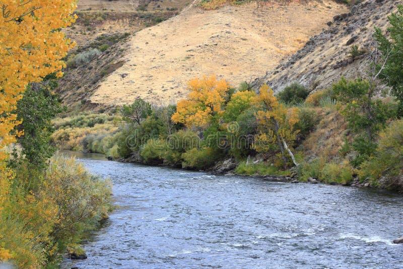 Il fiume Truckee immagini stock