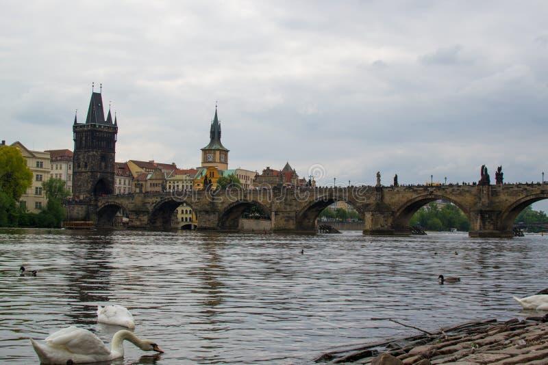 Il fiume Vltava attraversa Praga con Charles Bridge Karl?v most e il ponte vecchio della città Starom?stská mostecká v?ž fotografie stock libere da diritti