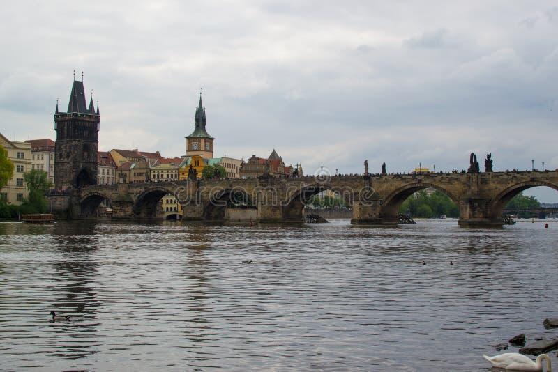 Il fiume Vltava attraversa Praga con Charles Bridge Karl?v most e il ponte vecchio della città Starom?stská mostecká v?ž fotografia stock libera da diritti