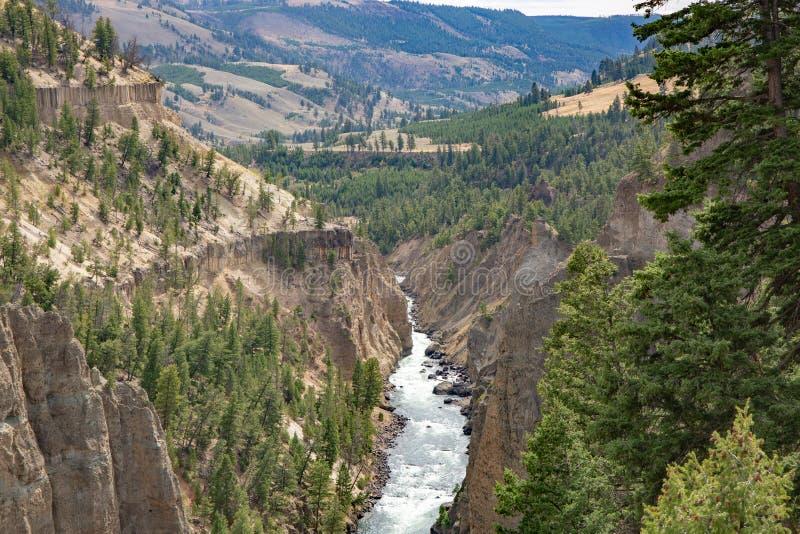 Il fiume Yellowstone e Grand Canyon di Yellowstone fotografia stock libera da diritti