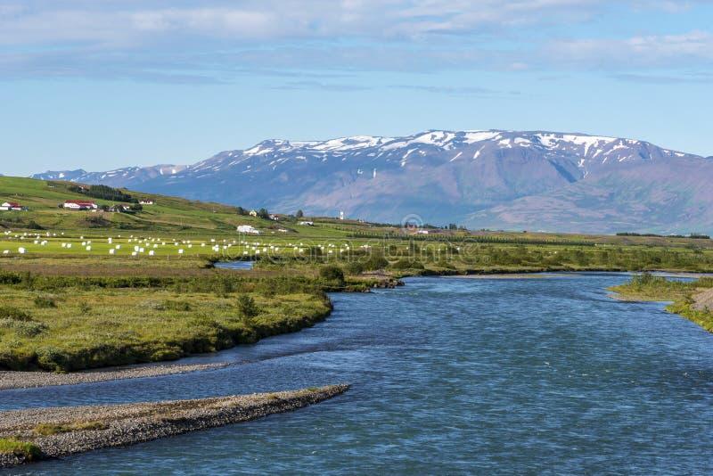 Il flusso del fiume di Horga nel comune di Horgarsveit dell'Islanda Nord-centrale immagine stock libera da diritti