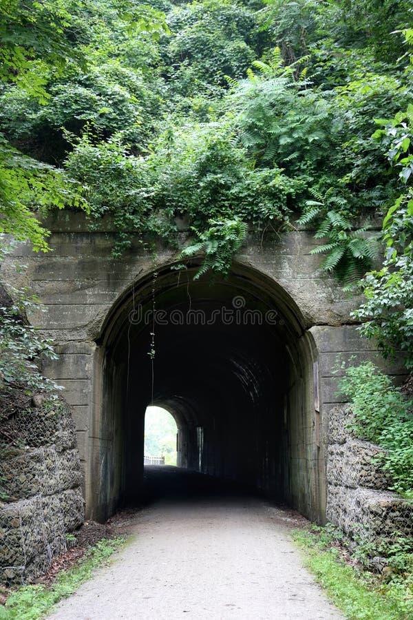 Il fogliame ha coperto il tunnel immagini stock