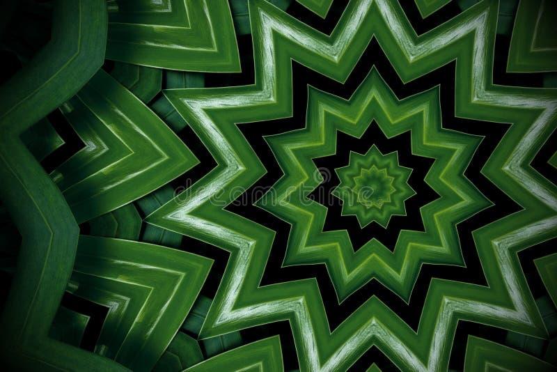 Il fondo astratto della pianta, philodendron va con effetto del caleidoscopio royalty illustrazione gratis