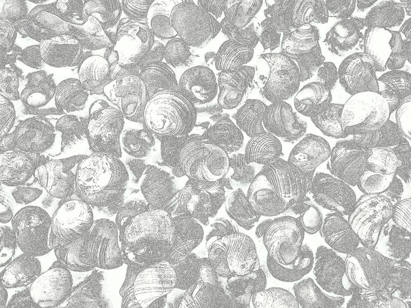 Il fondo con le lumache di mare pubblica come il suo tirato fotografia stock libera da diritti