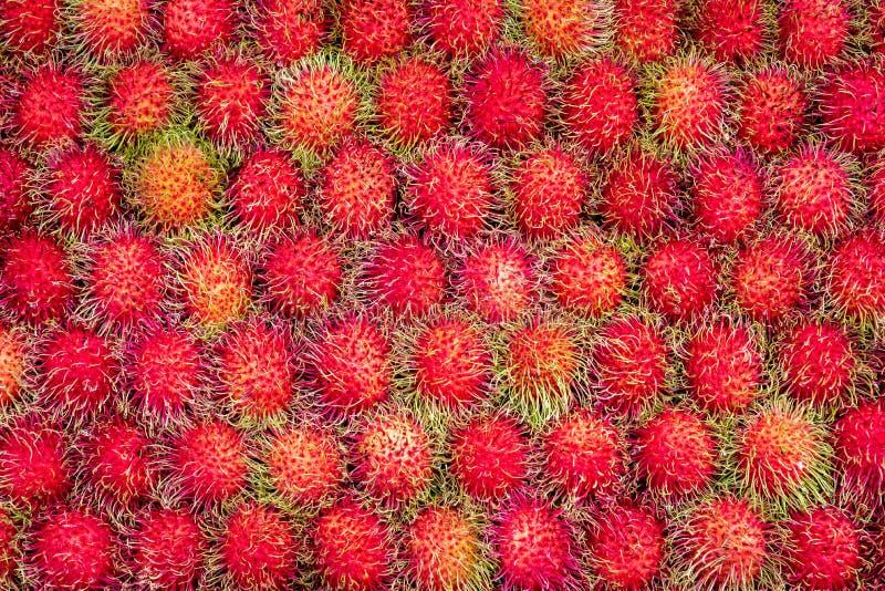 Il fondo della frutta deliziosa dolce del Rambutan dalla Tailandia, il Rambuntan ha le coperture rosse con pelliccia verde lunga  fotografia stock